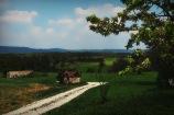 Kalchreuth8